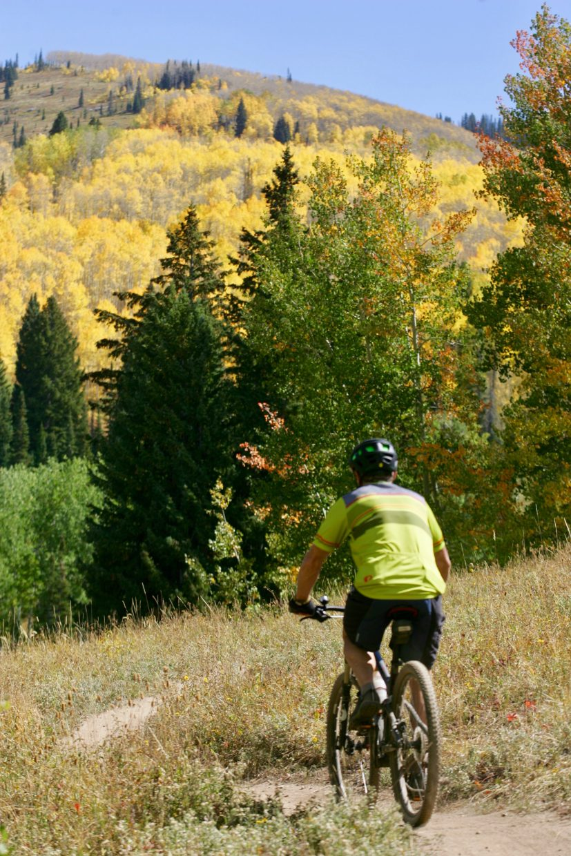 A biker rides on Flash of Gold Trail along Buffalo Pass.