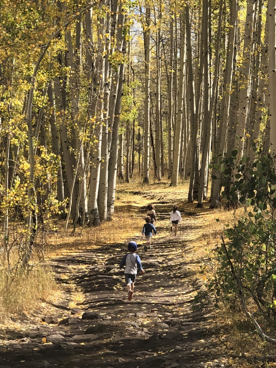 Children run down a golden, fall-colored trail.