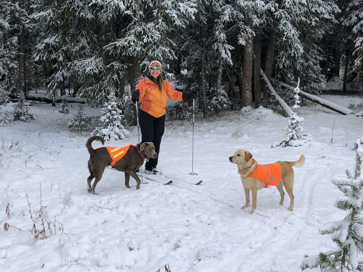 A woman and her two dogs explore the snow.
