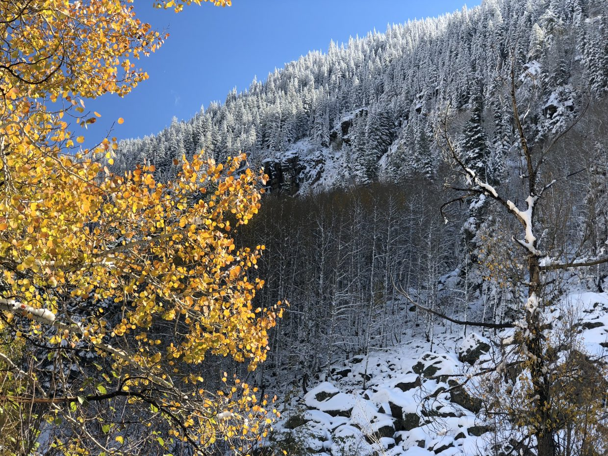 Fall or winter at Fish Creek?