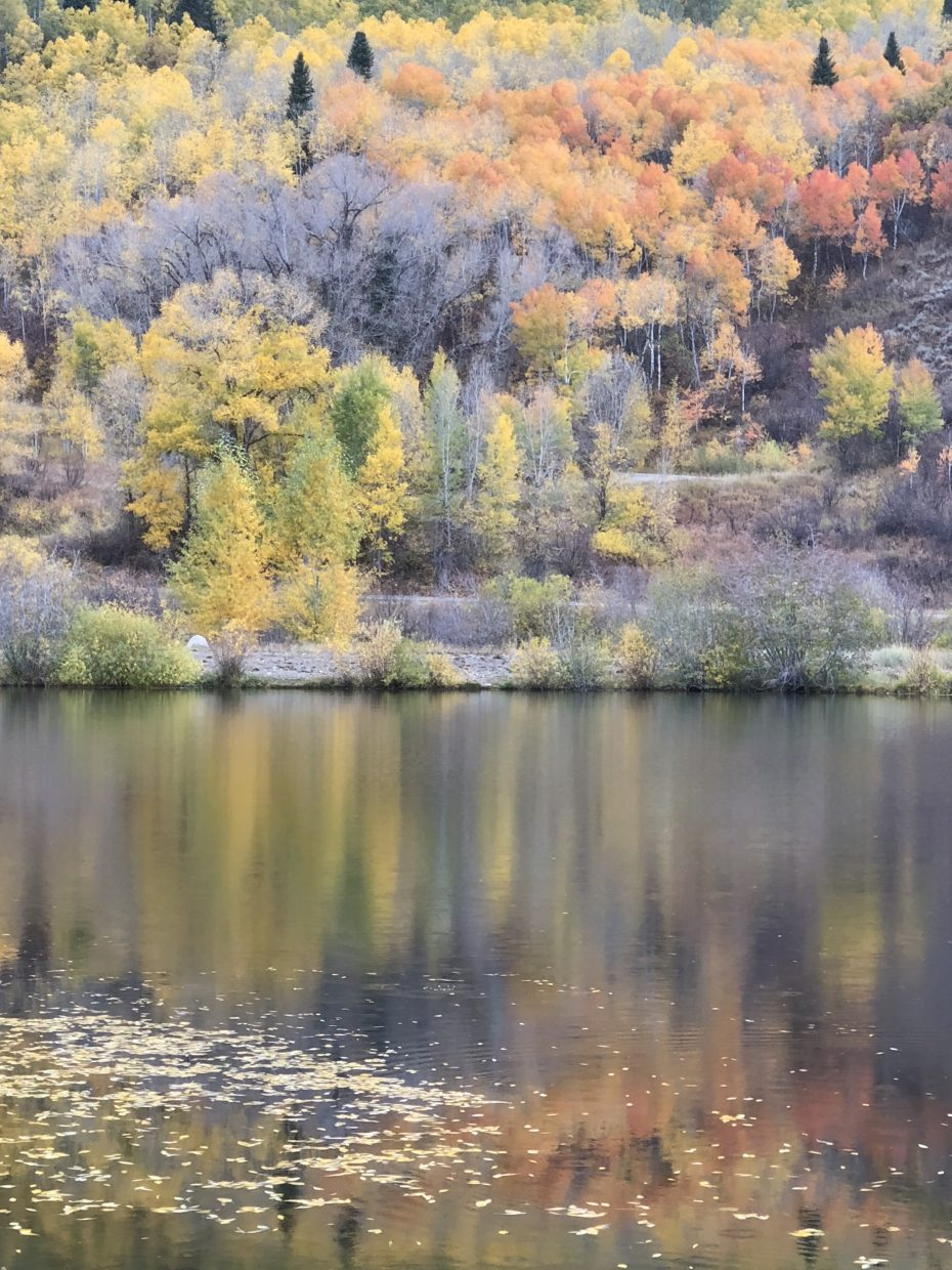 Fall is reflected in Fletcher's Pond.