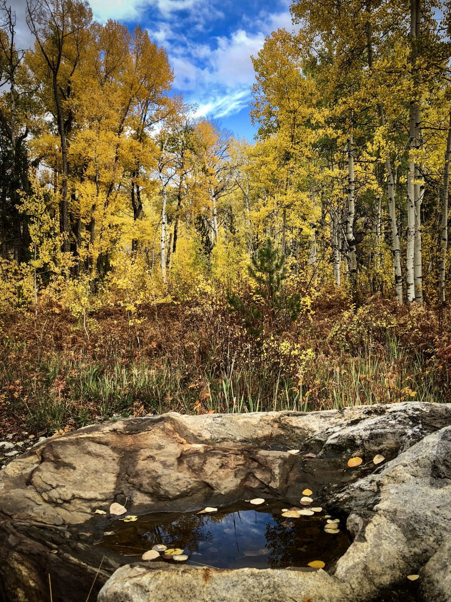 Falls colors were the highlight of a scenic drive downtown via Fish Creek Falls Road.