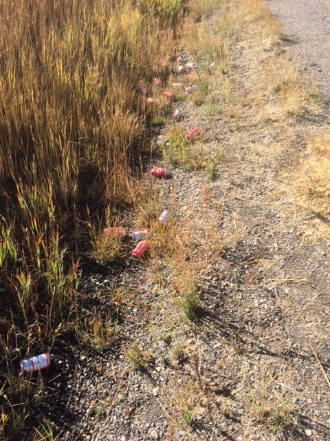 I spotted this on a bike ride Saturday on River Road next to Chuck Lewis parking lot. 40 Bud cans. Don't trash WZ