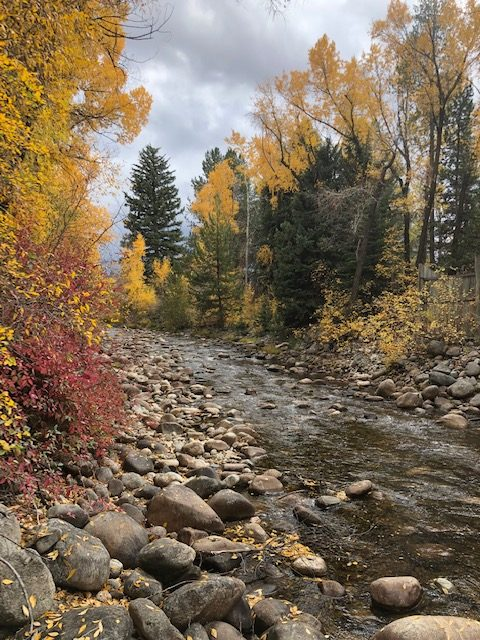 Fall leaves brighten up Fish Creek.