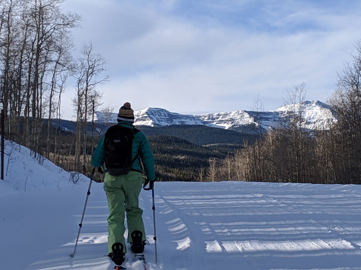 A cross country skier ventures into the Flat Tops Wilderness Area.