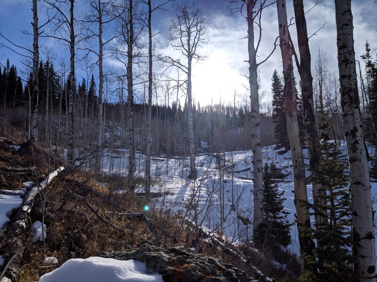 Snow coats most of the Flat Tops Wilderness Area.