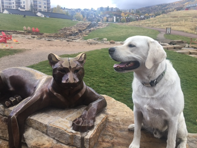 Axel and the Big Kitty at Steamboat Resort! Axel is almost 4! He's been scared of this kitty his whole life until this breakthrough moment!