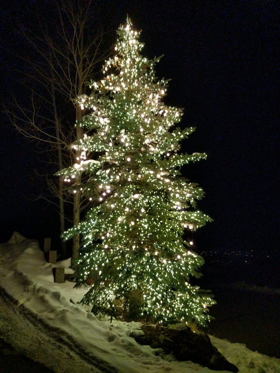 An outdoor tree is decorated with bright, holiday lights.