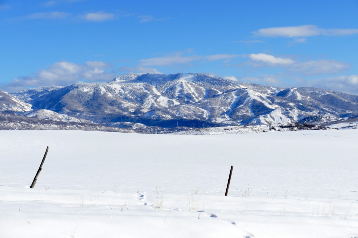 The ski area, from west Steamboat.