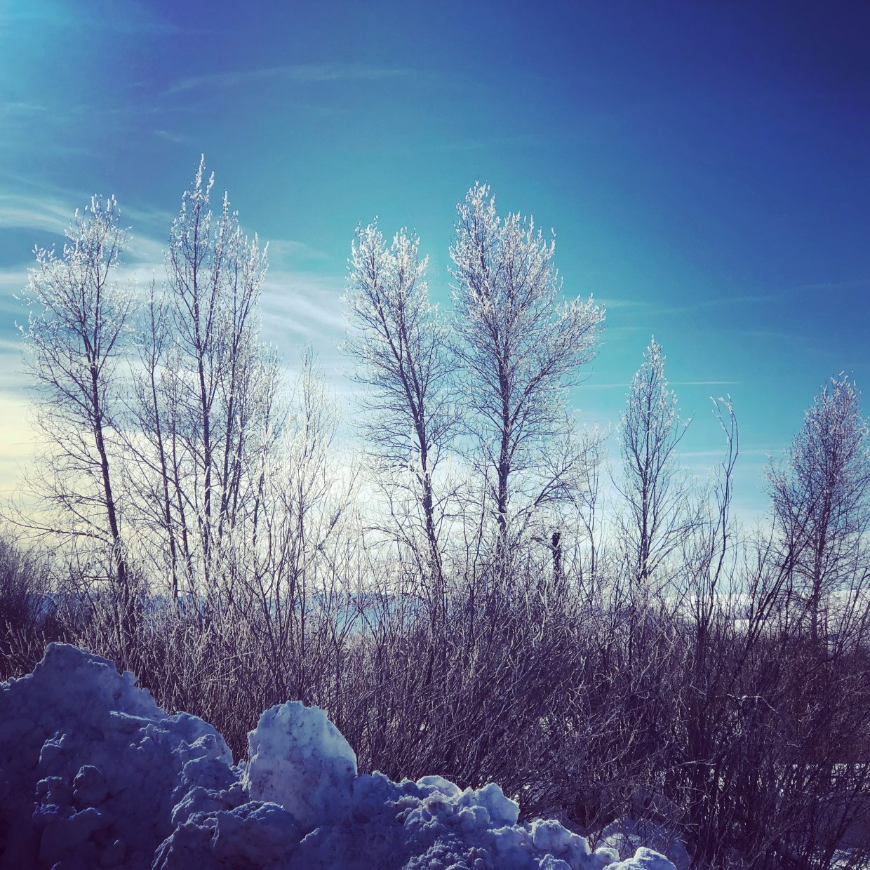 Winter in the Yampa Valley