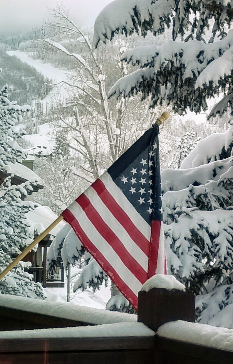 An American flag is framed by snow covered trees.