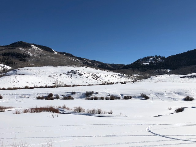 Winter in South Routt