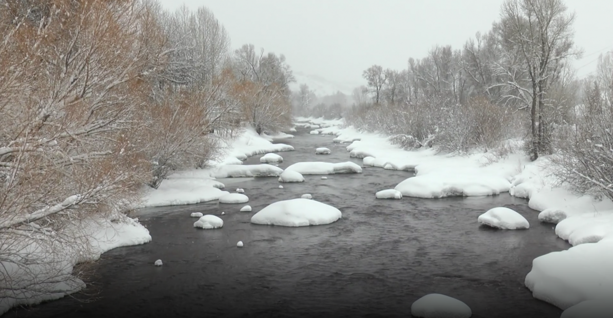 VIDEO: A snowy day in Steamboat Springs