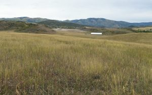 To the ballot: Steamboat voters to decide west Steamboat annexation