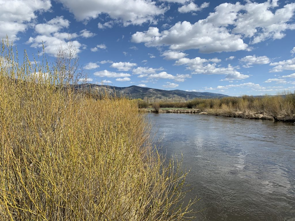 Spring is in the air in the Yampa Valley.