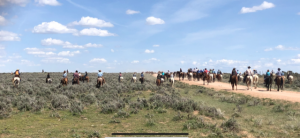 Routt County in photos: May 5 to 11, 2019