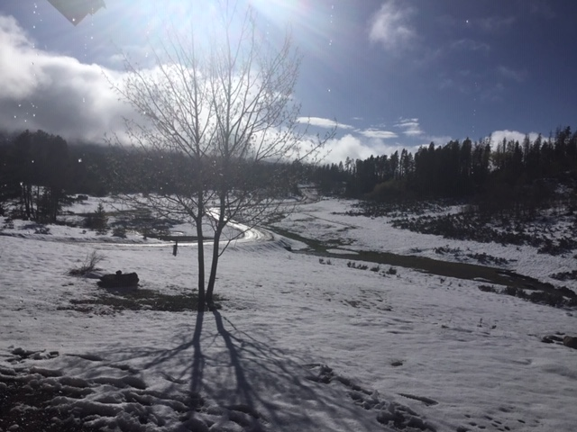 Snow takes over spring in Routt County.