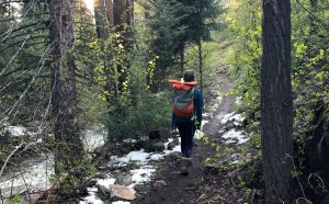 Help make decisions about Routt National Forest by applying to serve on Recreation Roundtable