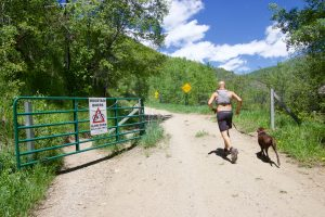 County, city making changes to Spring Creek Trail area