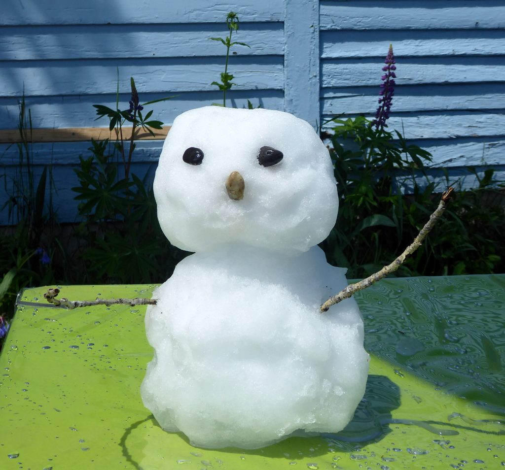 The snow that fell allowed for a little summer snowman building.