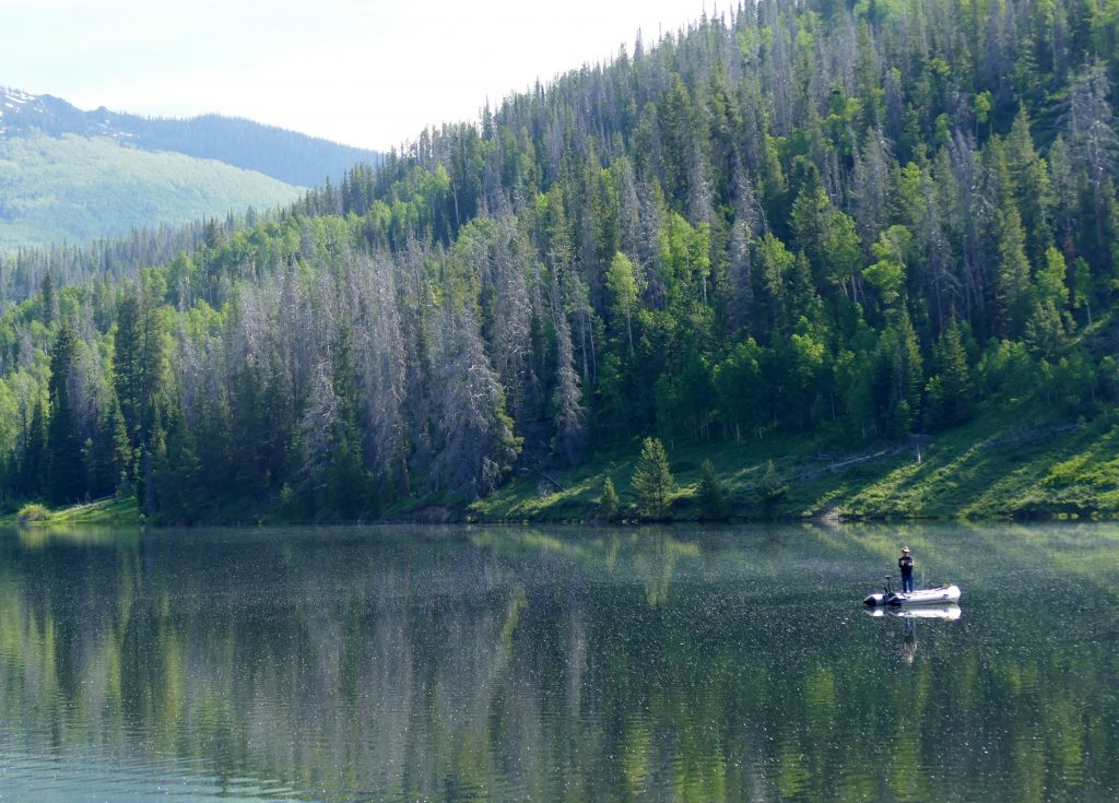 A man fishes on the Elk River.