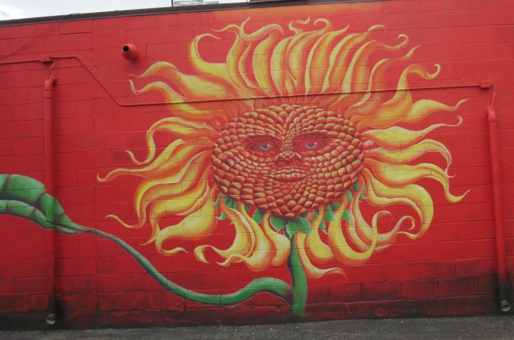 The mural on Seedz in downtown Steamboat Springs portrays sunflowers with attitude.