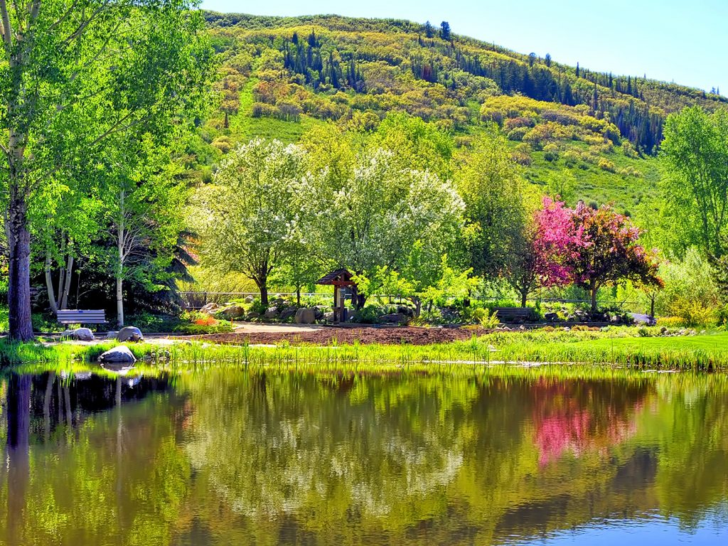 Summer is in full bloom at Yampa River Botanic Park.