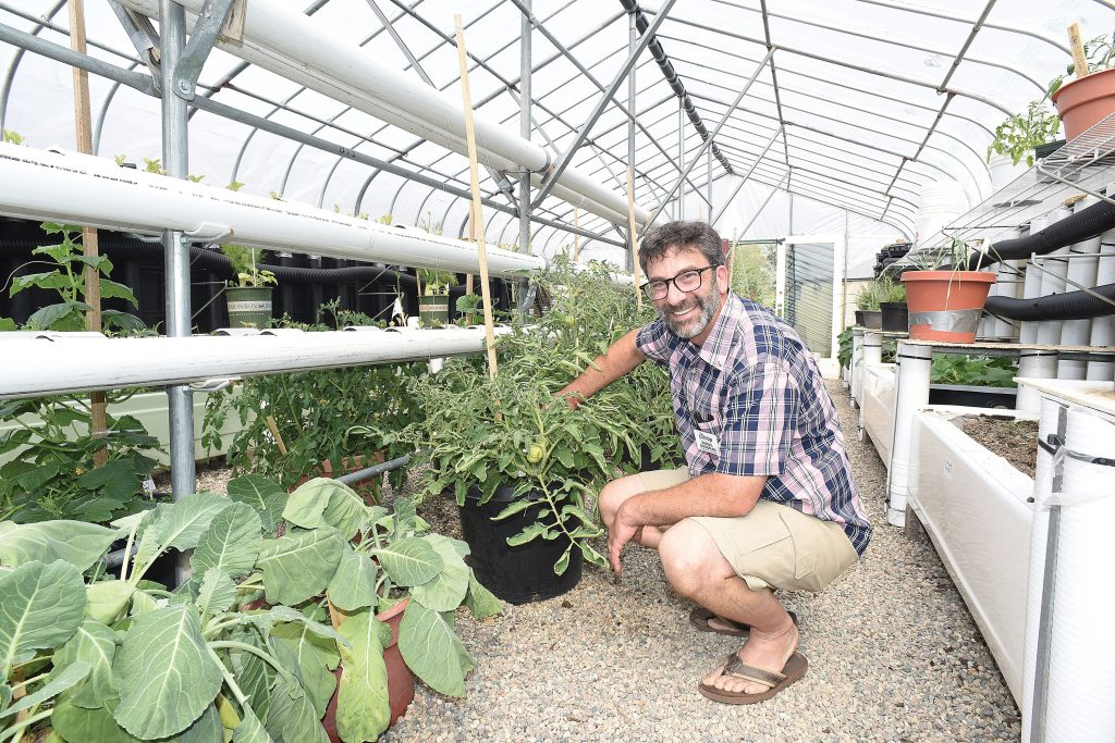 Love of LiftUp's new greenhouse already growing, an effort to reduce local food insecurity