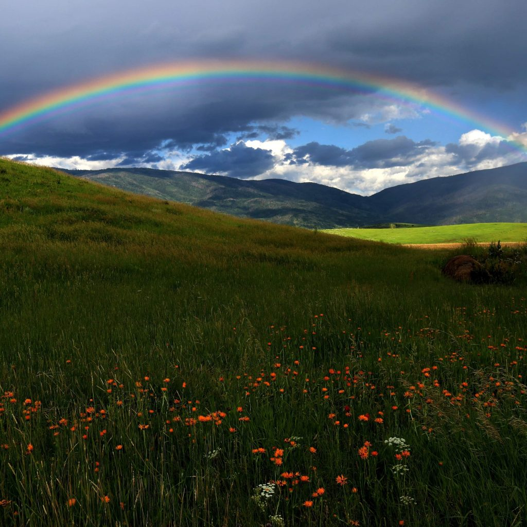 A rainbow reaches across a part of the Rising Sun Ranch along Colorado Highway 131.