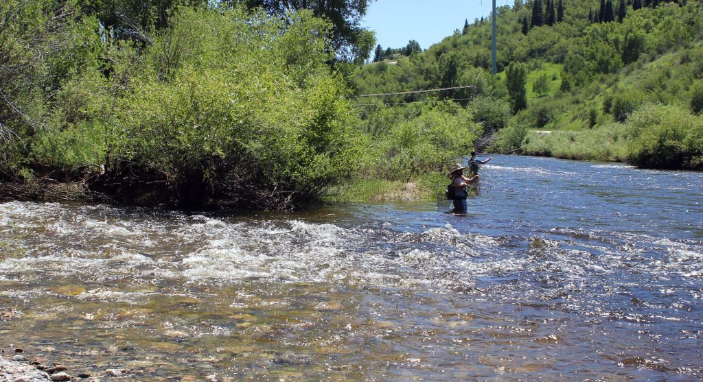 Water runs clear where Fish Creek enters the Yampa River.