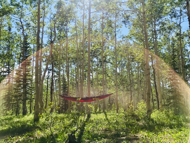 Took this photo while camping up at Buffalo Pass. Didn't plan to photo that sun dome, it just happened. Needless to say, it was a rather relaxing day on the hammock.
