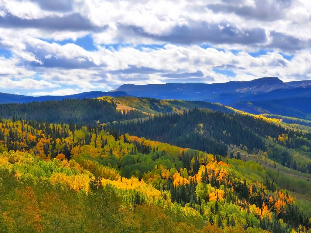 Fall colors take over Dunckley Pass in the Flat Tops Wilderness Area.