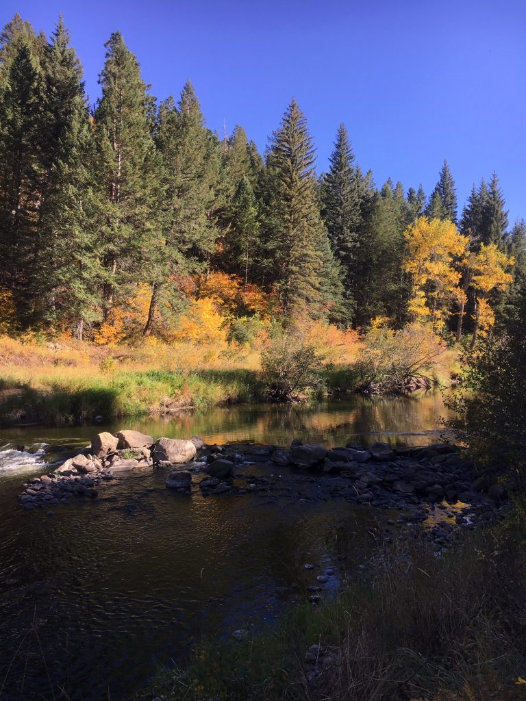 Fall has come alive in Oak Creek.