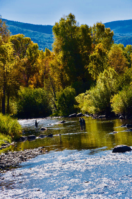 """""""Catching"""" early Fall changes on the Yampa."""