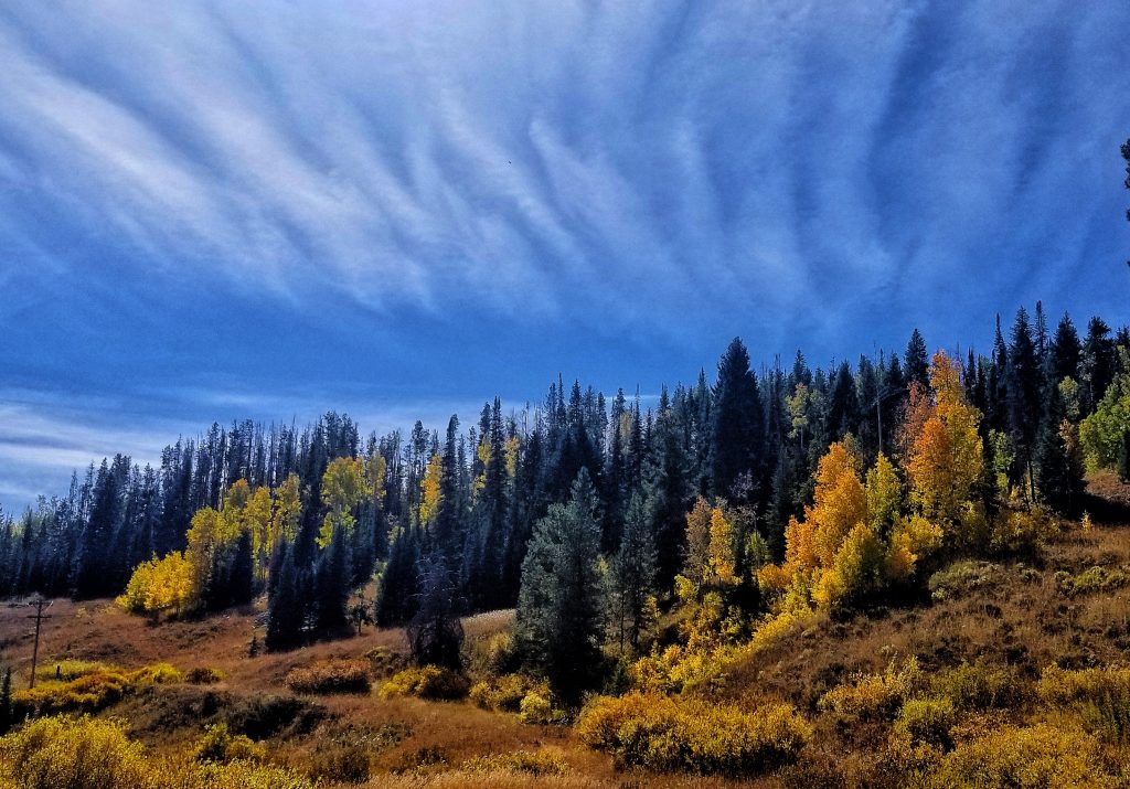 Showing off fall colors and beautiful clouds. This was taken along Highway 129 toward Steamboat Lake.