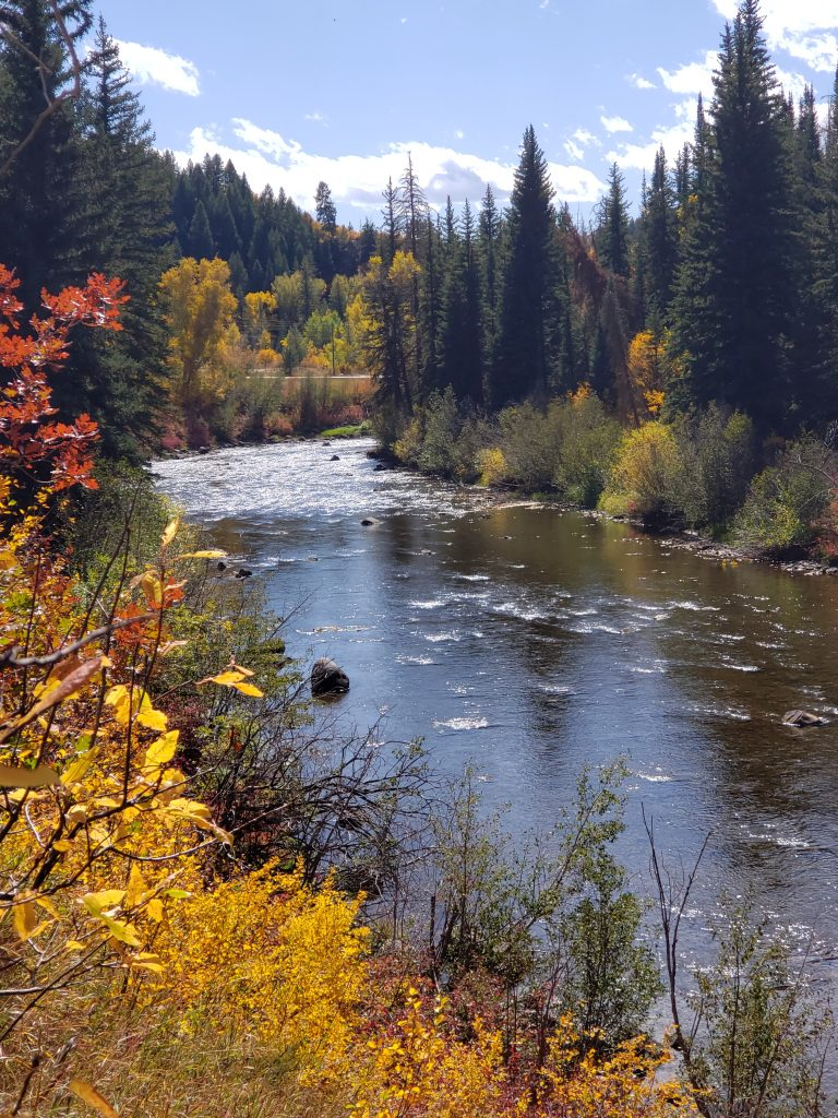 Changing leaves and evergreen trees like the Elk River.