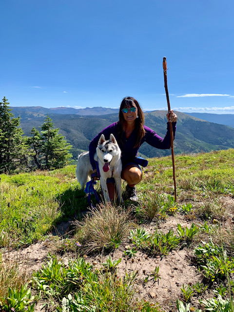 Aspen the husky pup hikes Hahns Peak.