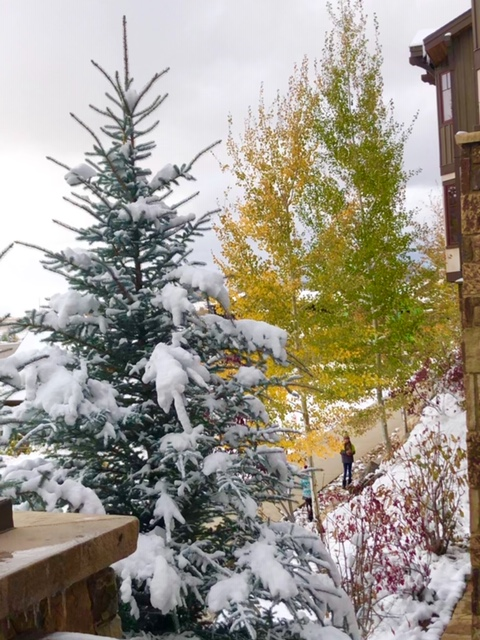 Fall and Winter in Steamboat