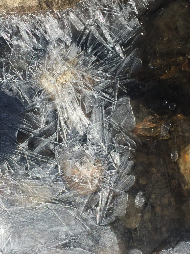 Ice cracks along water as winter creeps in.
