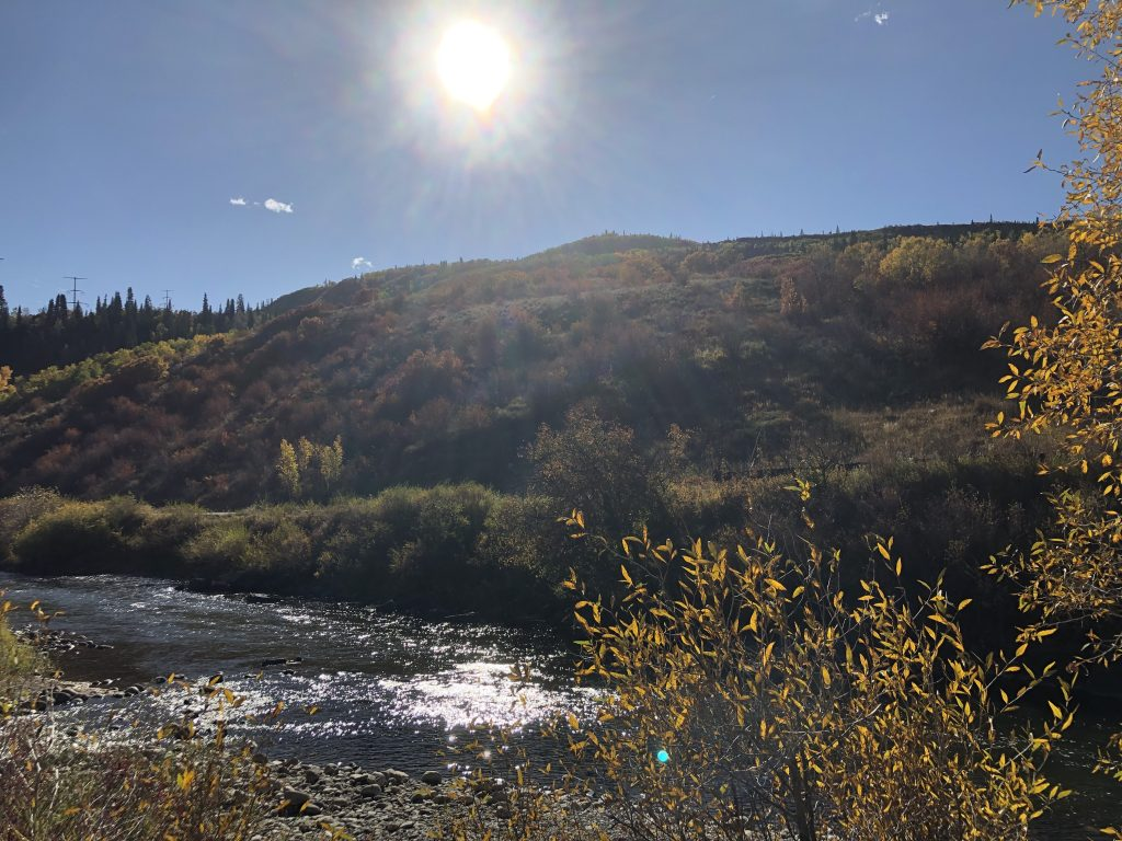 Ann Krause shares pictures from her jog around Steamboat Springs.