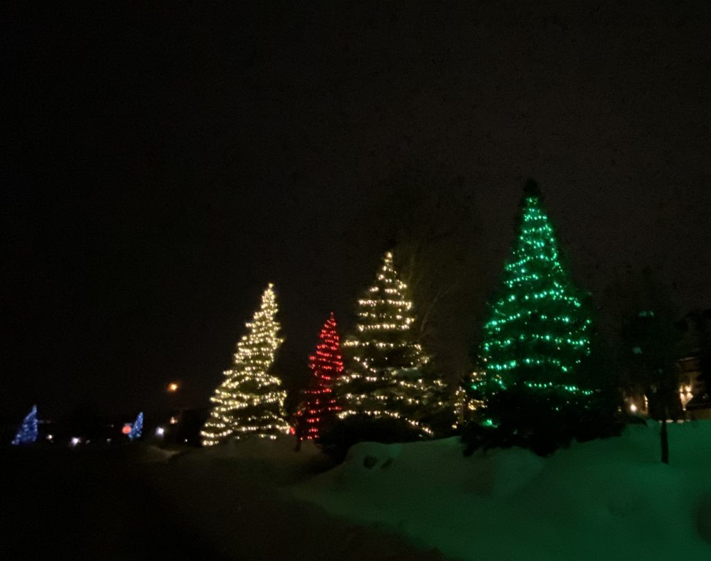 Lights decorate trees along the roads of Steamboat Springs.