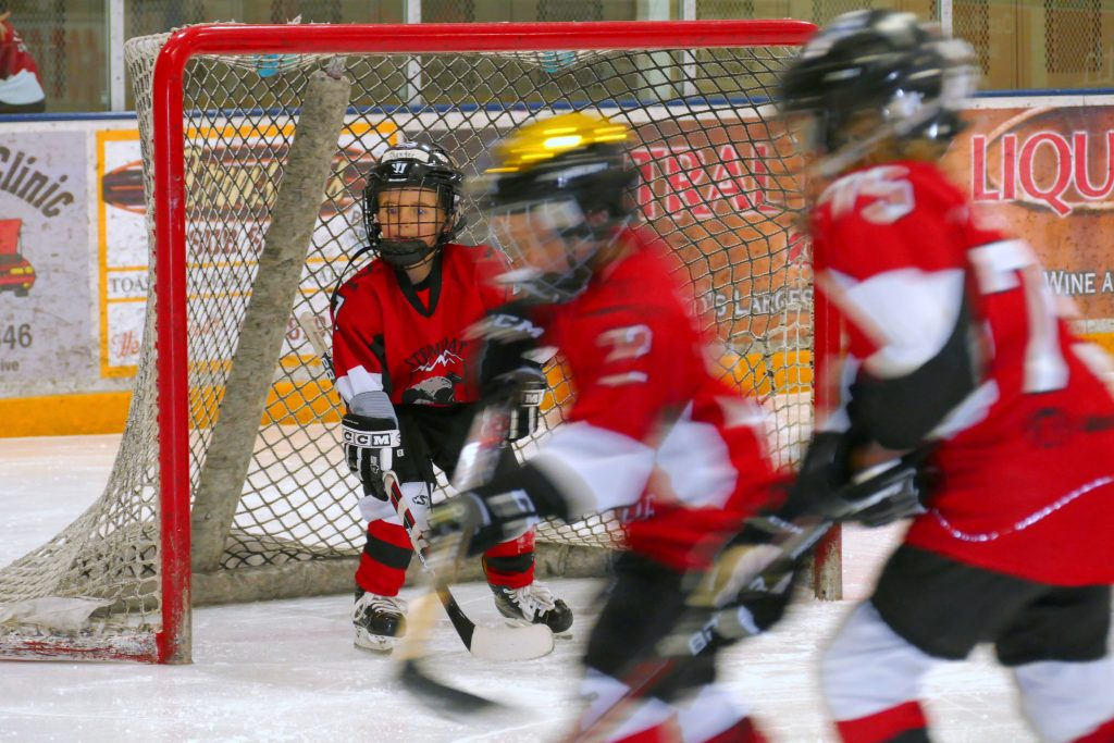 The Mite Jamboree Hockey Tournament, hosted by the Steamboat Stampede Youth Hockey Association, is this weekend at Howelsen Ice Arena. Twelve teams of boys and girls are participating. All are from Colorado except for one team from Park City, Utah.