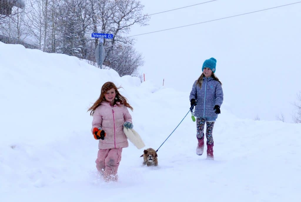 Two girls walk their new puppy Gus in the snow.