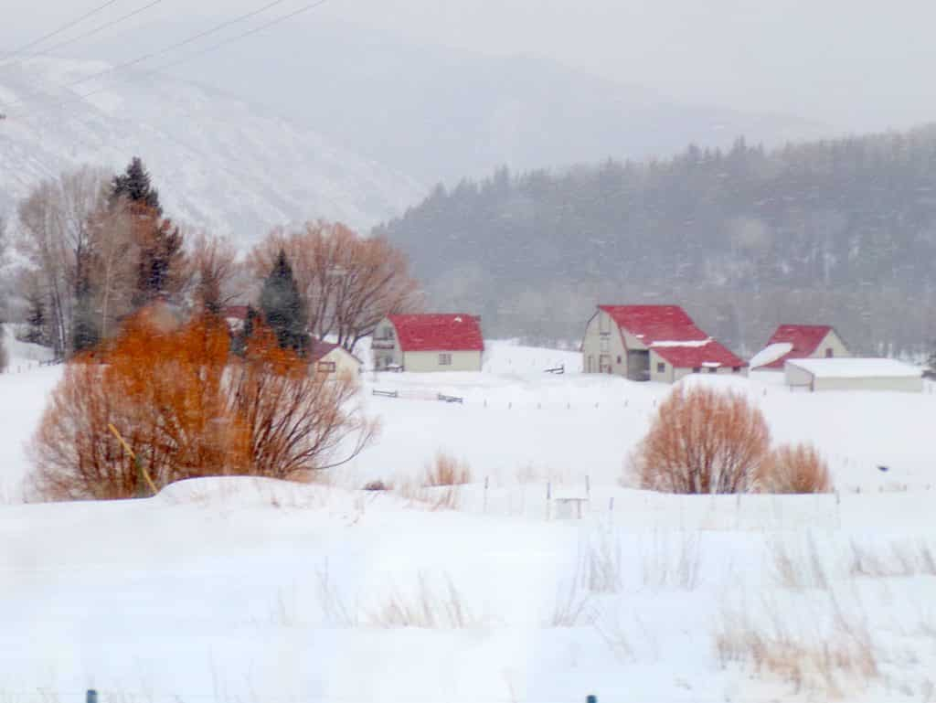Gwen Skinner shares photos from around Routt County.