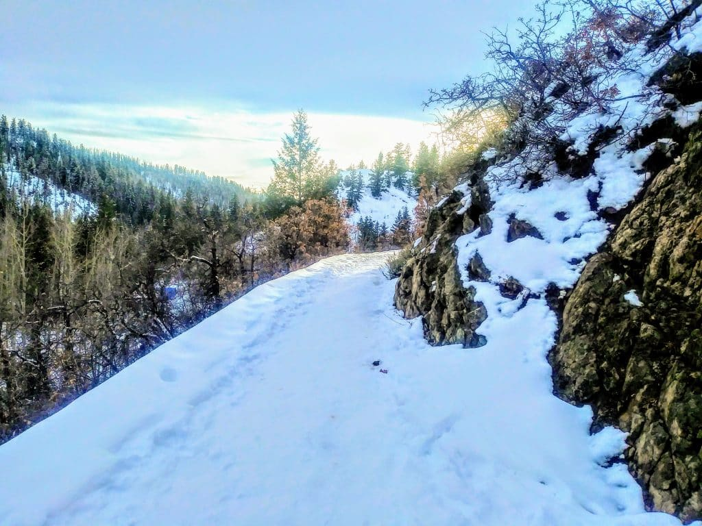 The path to Fish Creek Falls is coated with snow.