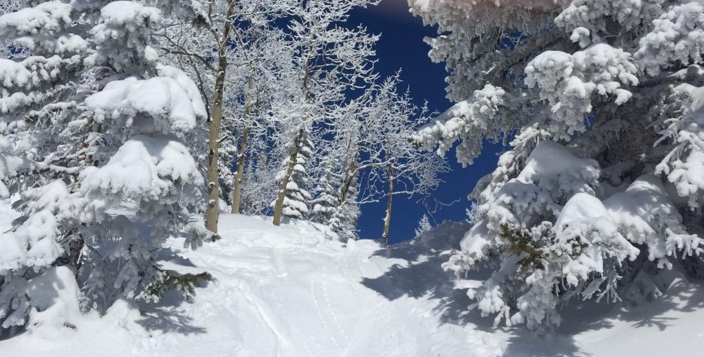 Bluebird Day in Steamboat Springs.