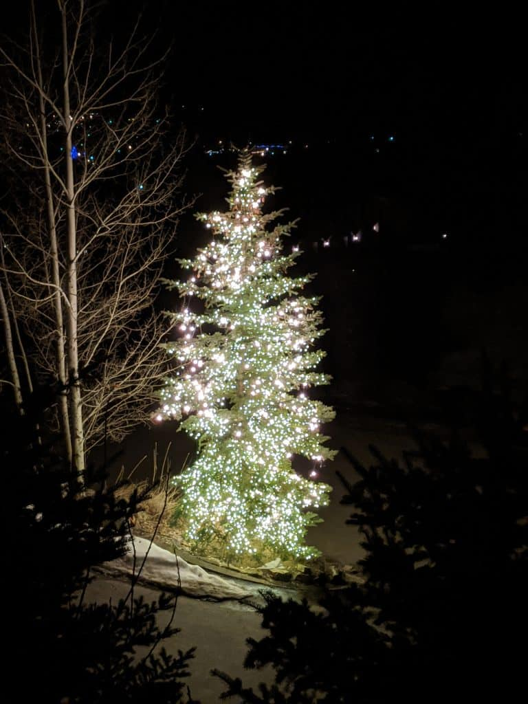 The people at 1088 Uncochief Circle in Steamboat Springs have been lighting up this tree for the last several days to give us all hope through these trying times.