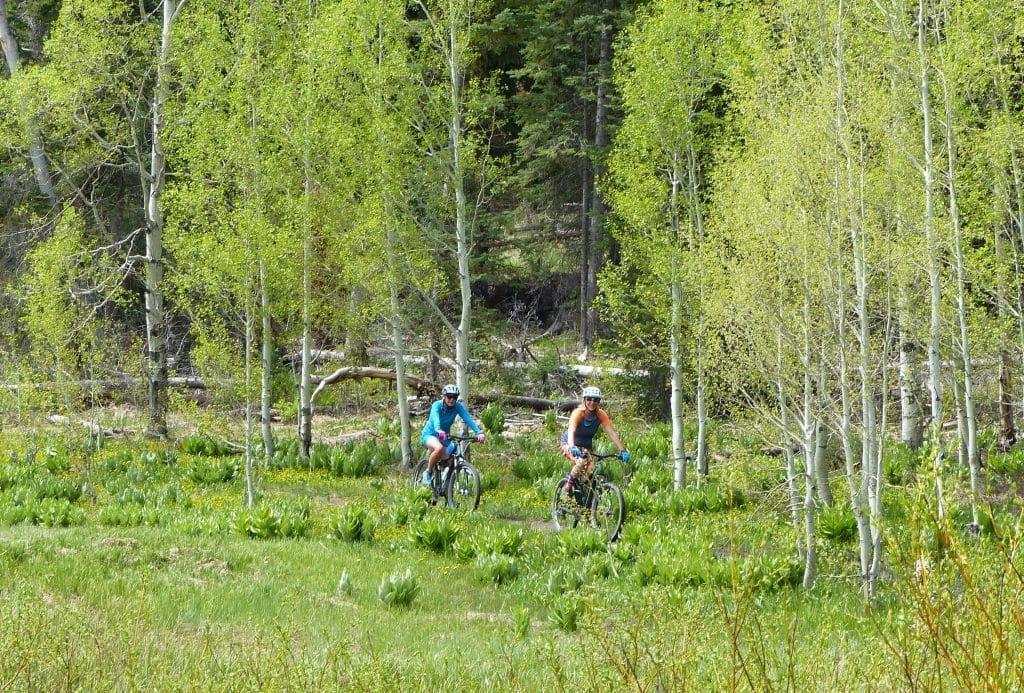 Pearl Lake Biking is a couple of people on the bike trail at Pearl Lake.