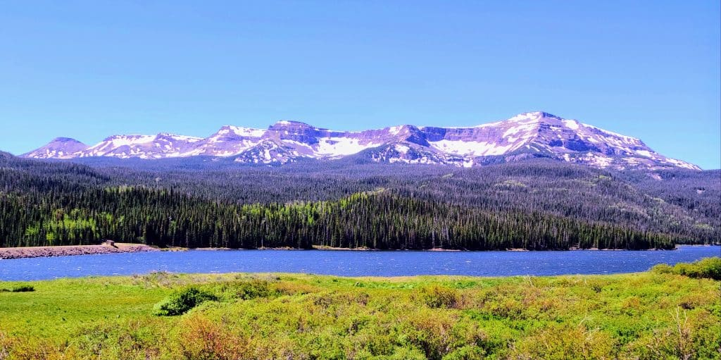 Flat Tops in Routt County.