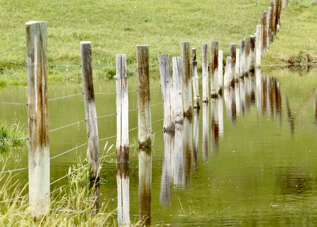 Fence & Water, County Road 29, in South Routt.